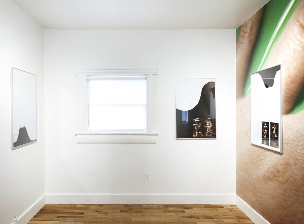 Installation view, Laura Schawelka, Useless Twin, Garden, 2016.