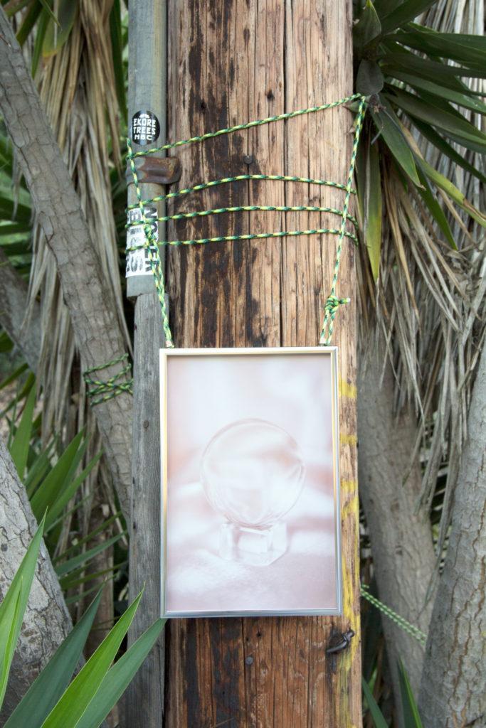 Arden Surdam, Untitled